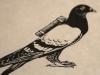 carrier pigeon detail